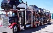 Texas Free Auto Transportation Quote Form