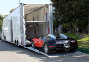 Enclosed auto transport shipping services provider at FREEPORT,  TX